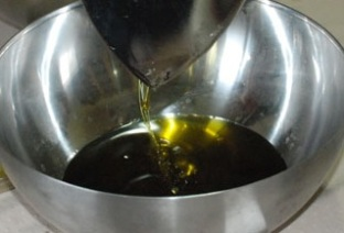 olive oil extraction.jpg